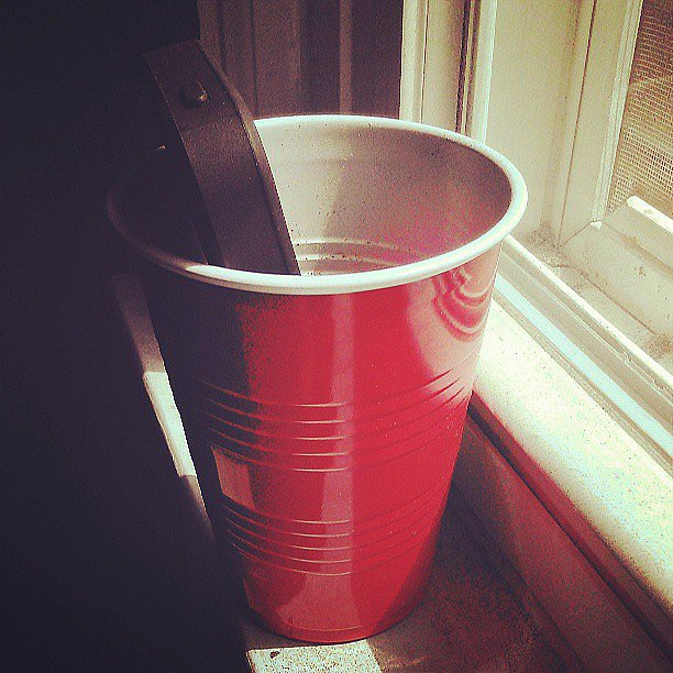 Bump-Music-Out-Cup