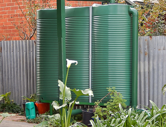 The Essentials of Collecting and Using Rainwater