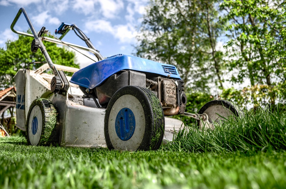 5 Home Maintenance Tips - The yard