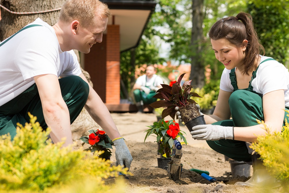 Tips to Hire the Best Gardening Services for Your Landscape - 1