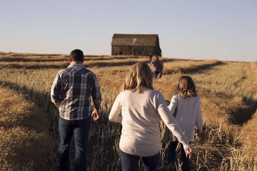 family walks on grasses during daytime
